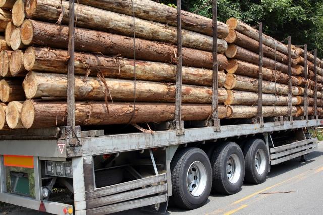 林業にIoTやドローンを導入! 「ものづくり補助金」2020